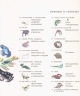 Уникальная иллюстрированная энциклопедия для детей. Животные